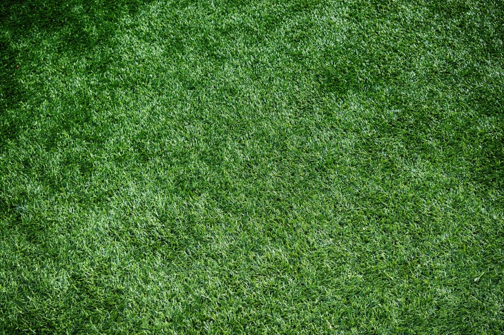 artificial-turf-1711556_1920