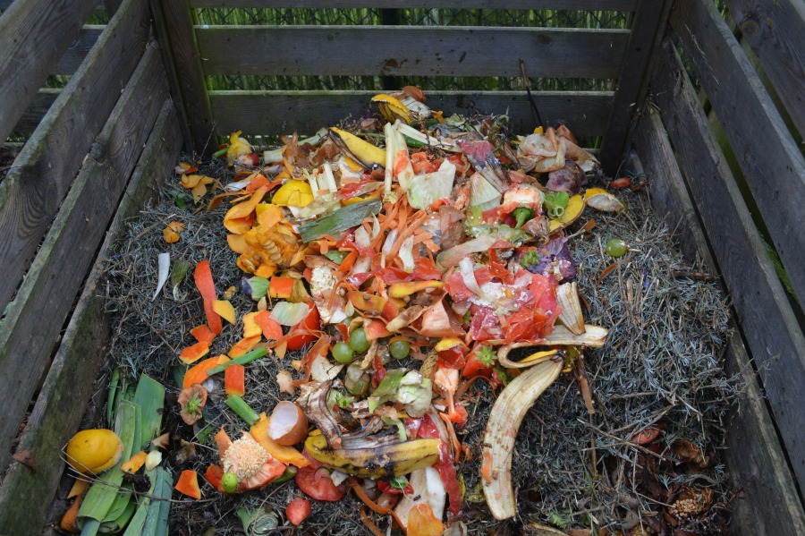 La mode du bac à compost