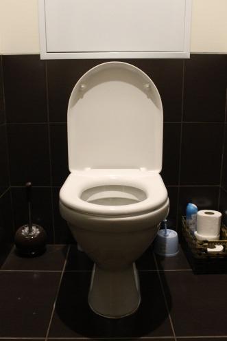 toilet-663707_1920