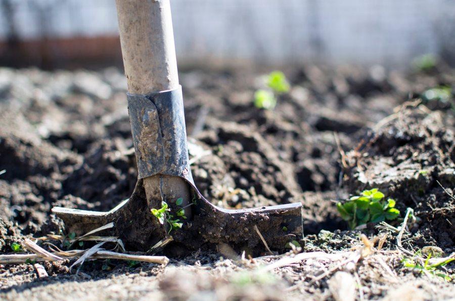 Quelle est la composition de la terre végétale?