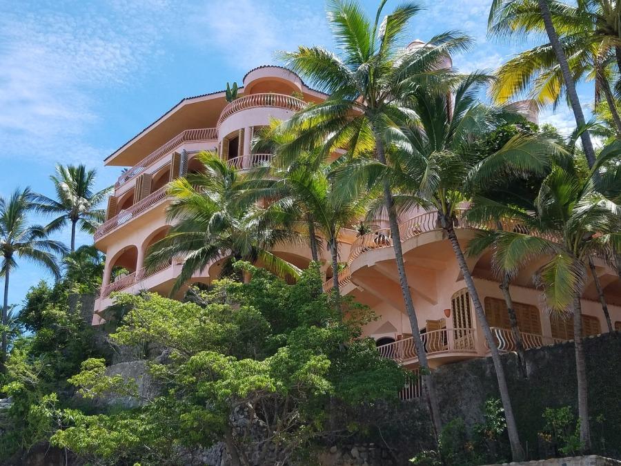 maison et palmiers