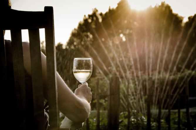 boire un verre au jardin