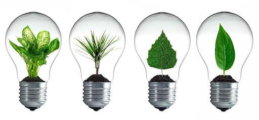 lumière écologique