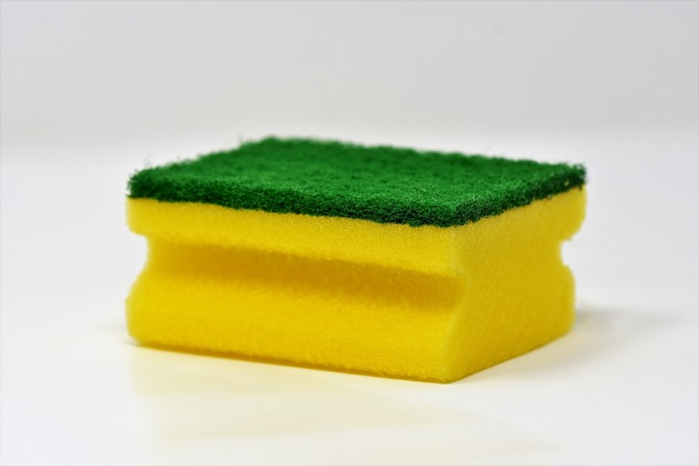 sponge-3081410_1280