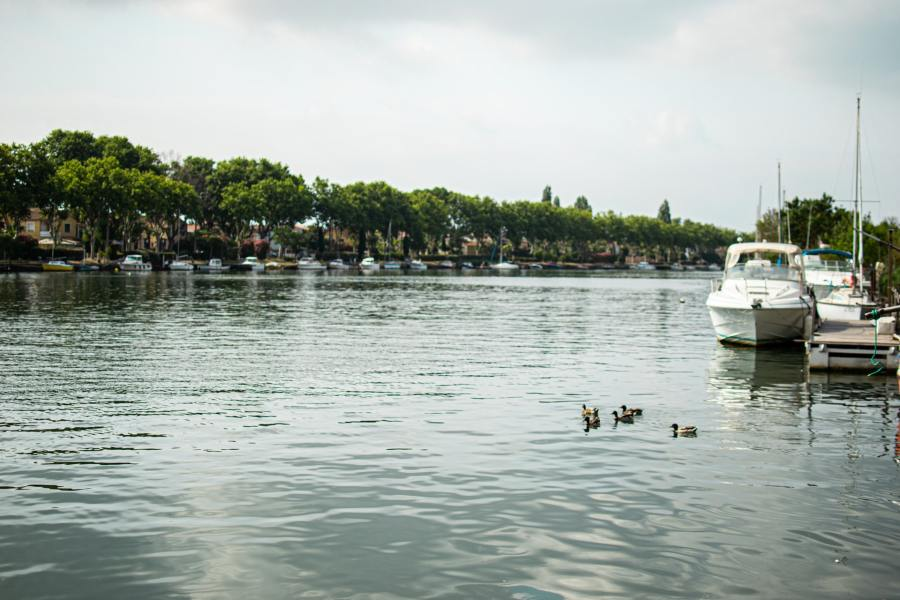 Focus sur l'immobilier dans le département del'Hérault