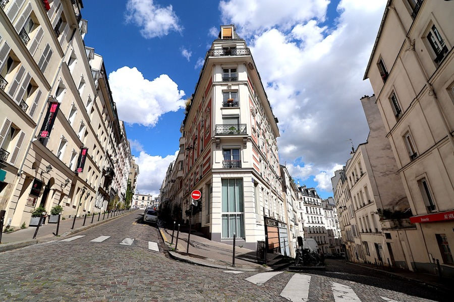 Pourquoi les nuisibles montent dans les immeubles à Paris?